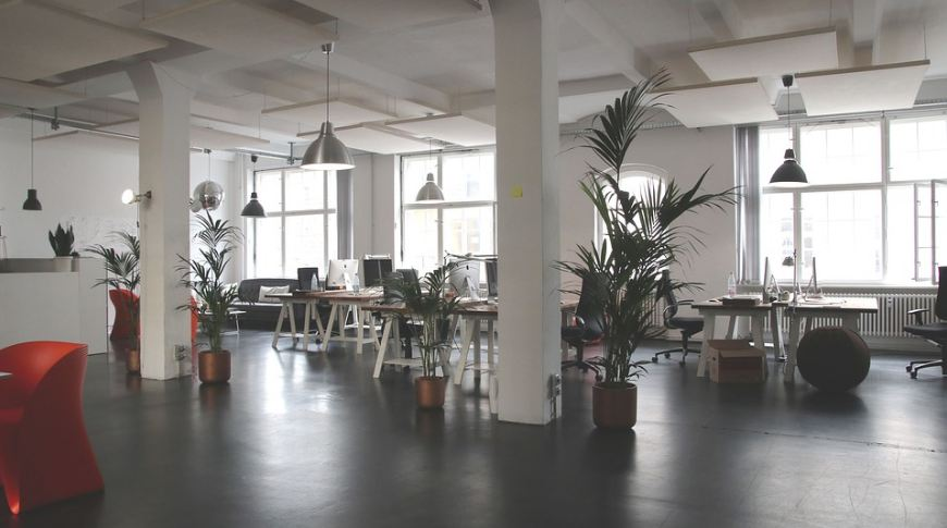 a co-working space with indoor plants